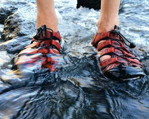 Image of can you wear water shoes with fins